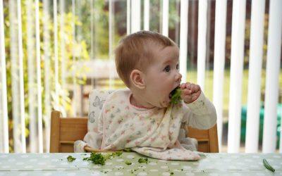 Témoignage – diversification alimentaire menée par l'enfant